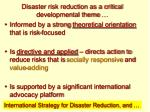 disaster risk reduction as a critical developmental theme