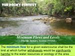 minimum flows and levels florida statutes section 373 042