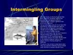 intermingling groups