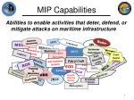 mip capabilities