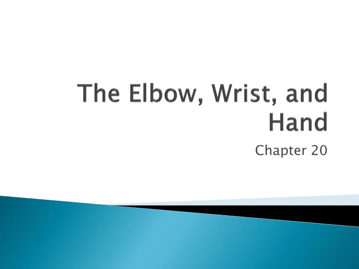 the elbow wrist and hand n.