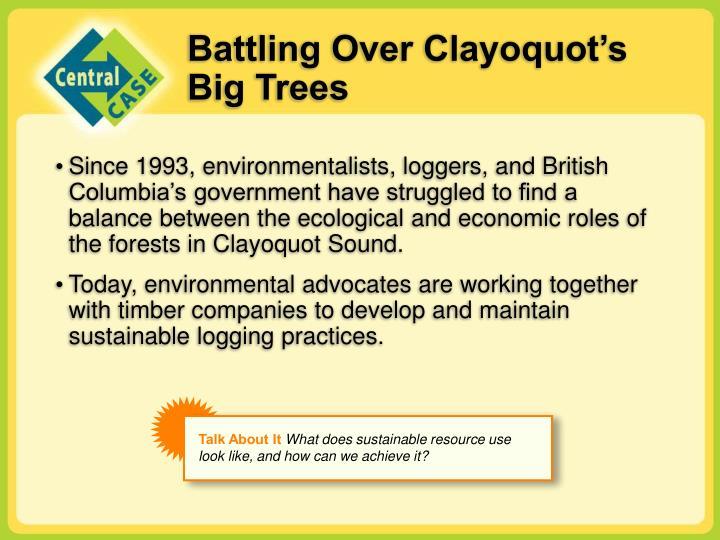 Battling over clayoquot s big trees