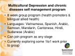 multicultural depression and chronic diseases self management program