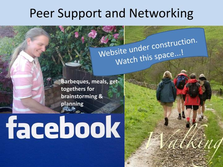 Peer Support and Networking