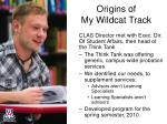 origins of my wildcat track1
