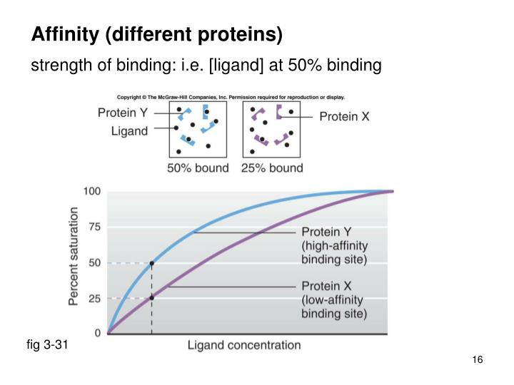 Affinity (different proteins)
