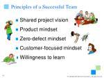 principles of a successful team