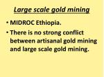 large scale gold mining