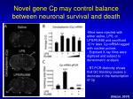 novel gene cp may control balance between neuronal survival and death1