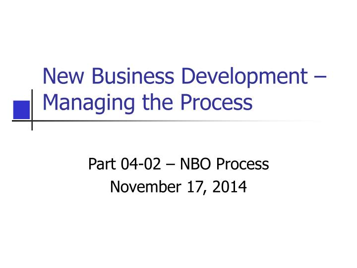 new business development managing the process n.