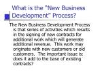 what is the new business development process