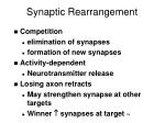 synaptic rearrangement