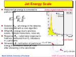 jet energy scale