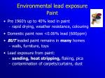 environmental lead exposure paint