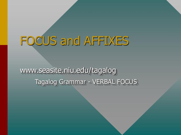 focus and affixes n.
