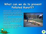 what can we do to prevent polluted runoff