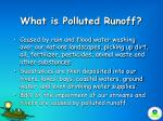 what is polluted runoff