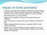 impact on birds and bats