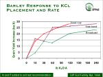 barley response to kcl placement and rate