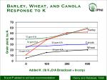 barley wheat and canola response to k