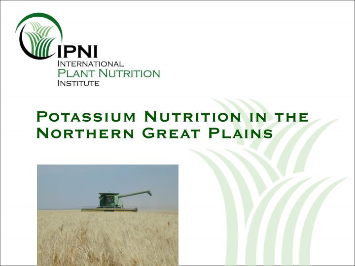 potassium nutrition in the northern great plains n.