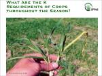 what are the k requirements of crops throughout the season