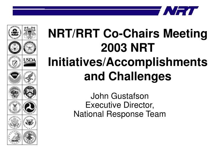nrt rrt co chairs meeting 2003 nrt initiatives accomplishments and challenges n.