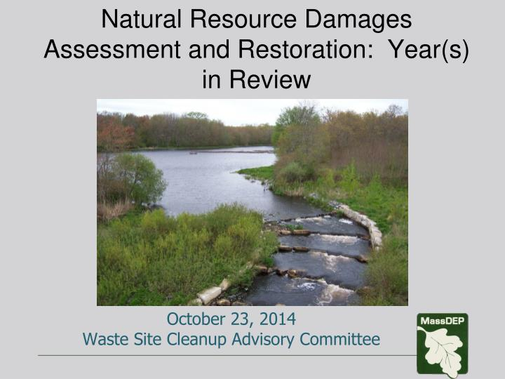natural resource damages assessment and restoration year s in review n.
