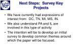 next steps survey key projects