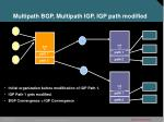 multipath bgp multipath igp igp path modified