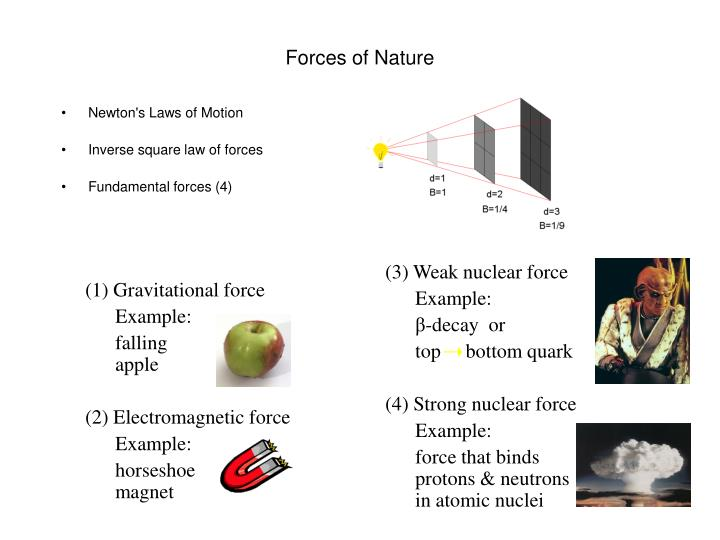 forces of nature n.