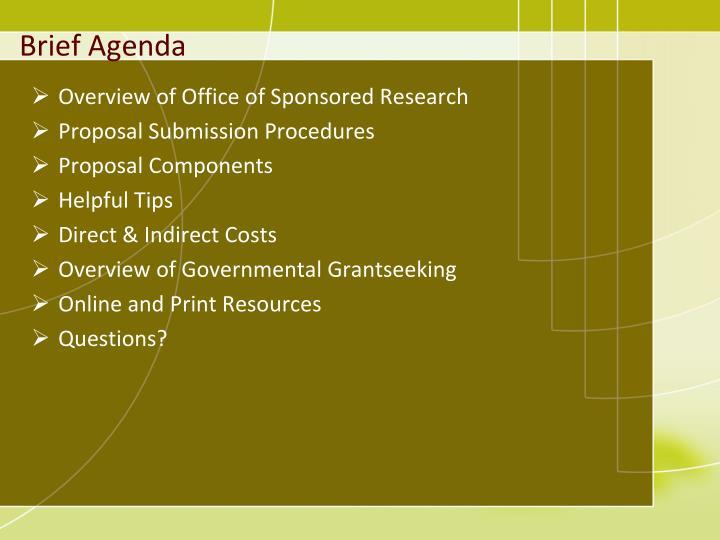 Brief agenda