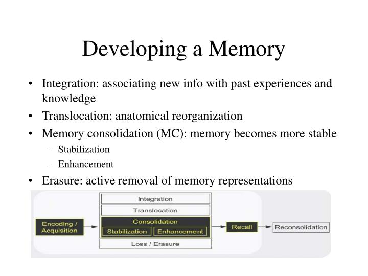 Developing a Memory