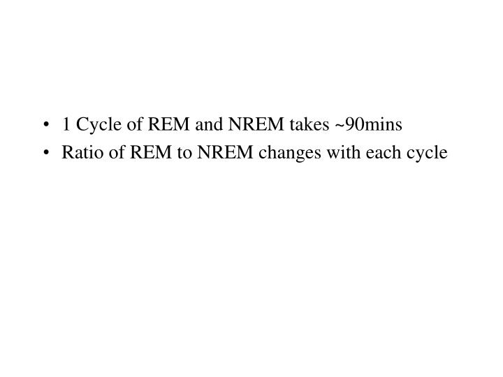 1 Cycle of REM and NREM takes ~90mins
