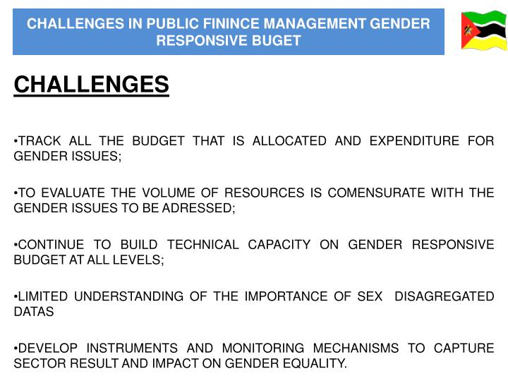 CHALLENGES IN PUBLIC FININCE MANAGEMENT