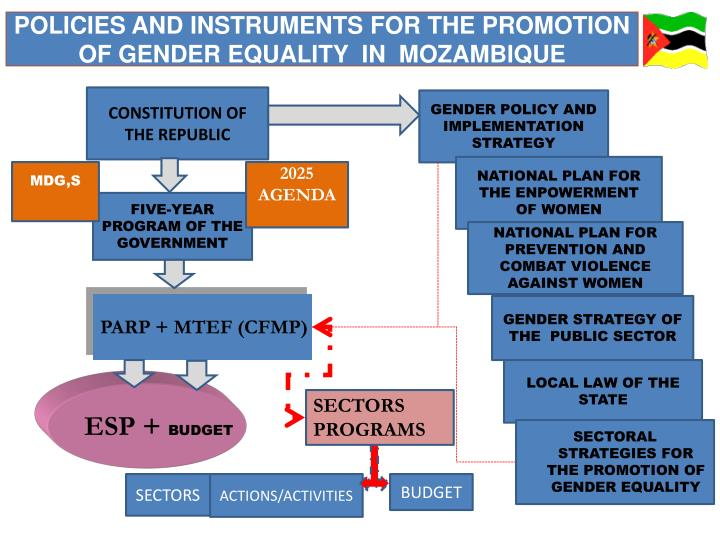 POLICIES AND INSTRUMENTS FOR THE PROMOTION OF GENDER EQUALITY  IN  MOZAMBIQUE