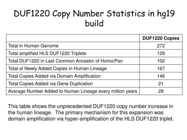 DUF1220 Copy Number Statistics in hg19 build
