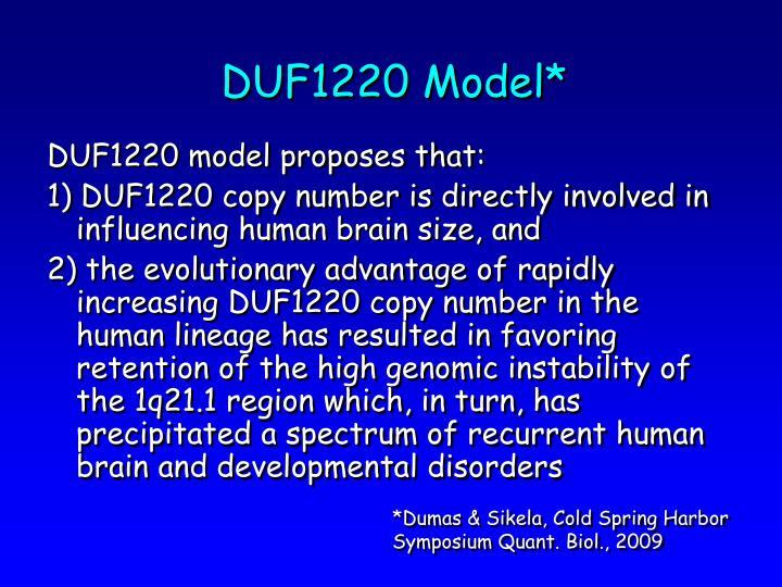 DUF1220 Model*