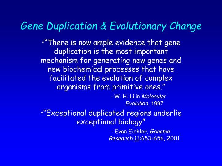 Gene Duplication & Evolutionary Change