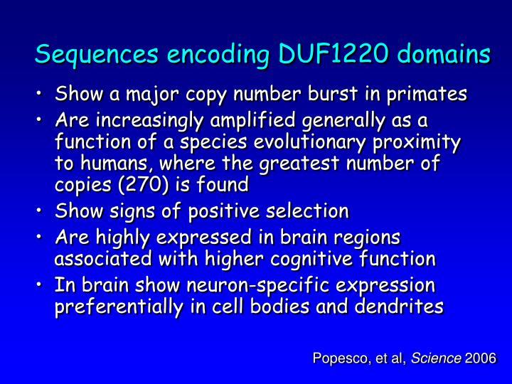 Sequences encoding DUF1220 domains