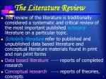 the literature review1