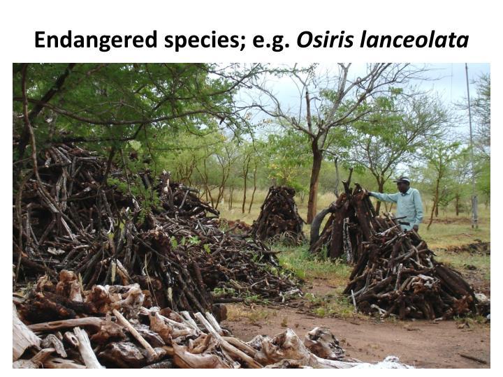 Endangered species; e.g.