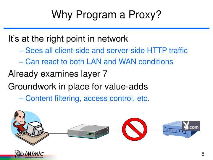 Why Program a Proxy?