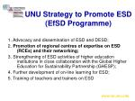 unu strategy to promote esd efsd programme