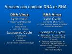 viruses can contain dna or rna