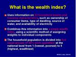 what is the wealth index