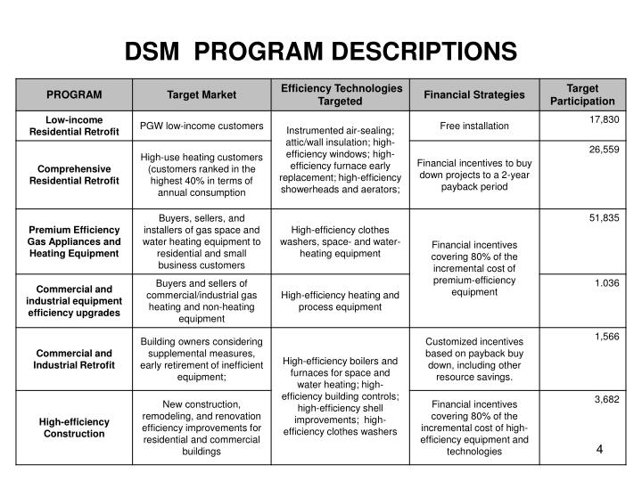 DSM  PROGRAM DESCRIPTIONS