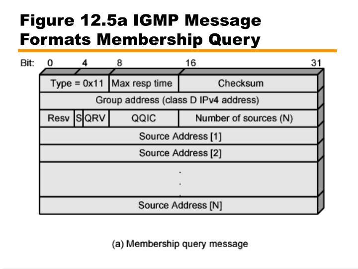 Figure 12.5a IGMP Message Formats Membership Query