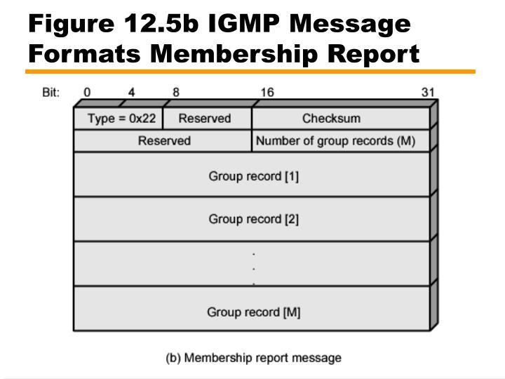 Figure 12.5b IGMP Message Formats Membership Report