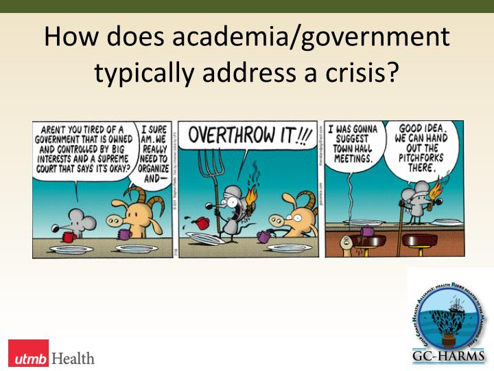 How does academia/government typically address a crisis?